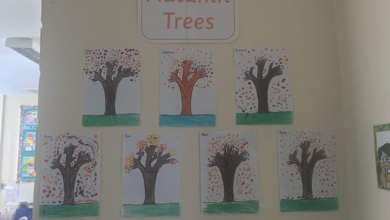 Our Autumn Trees